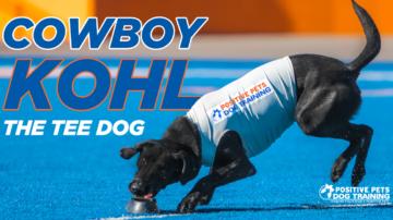 cowboy kohl boise state broncos tee dog