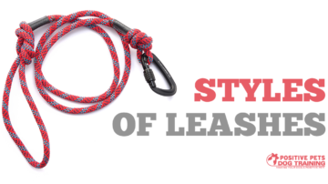 The different styles of dog leashes and their uses.