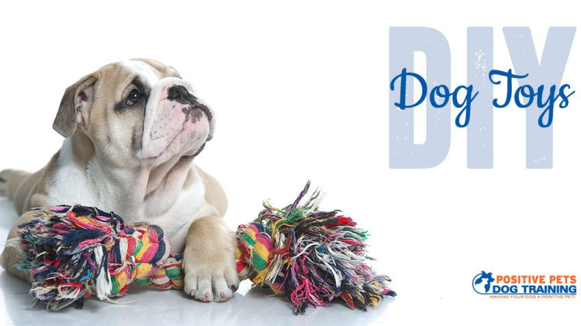 DIY dog toys you can make at home.