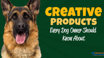 Creative Items Every Dog Owner Should Know About