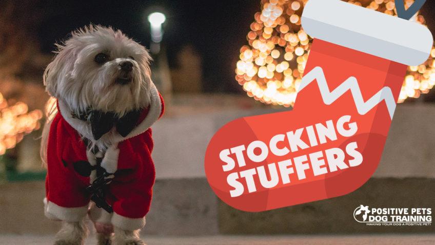 Dog Stocking Stuffer Ideas