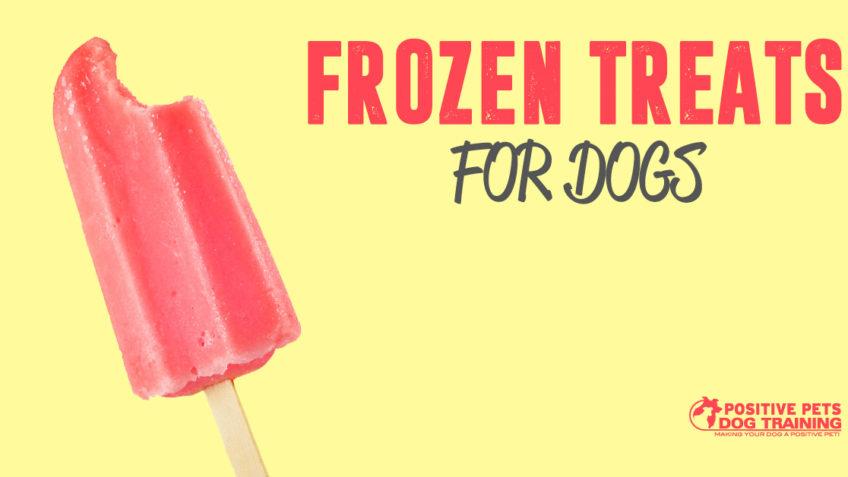 Frozen treats for dogs.