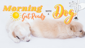 Getting Ready In The Morning With A Puppy
