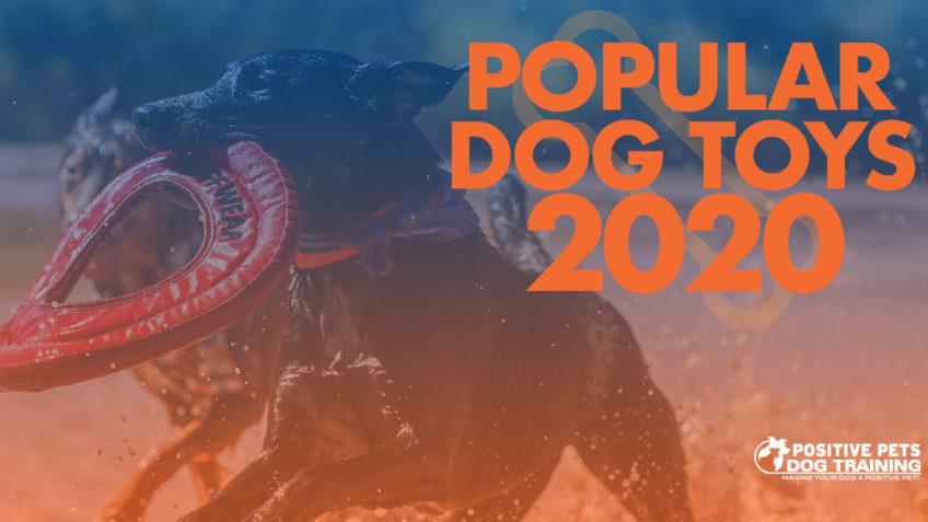 Popular Dog Toys in 2020