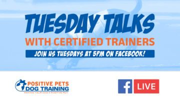 Positive Pets Boise Tuesday Talks