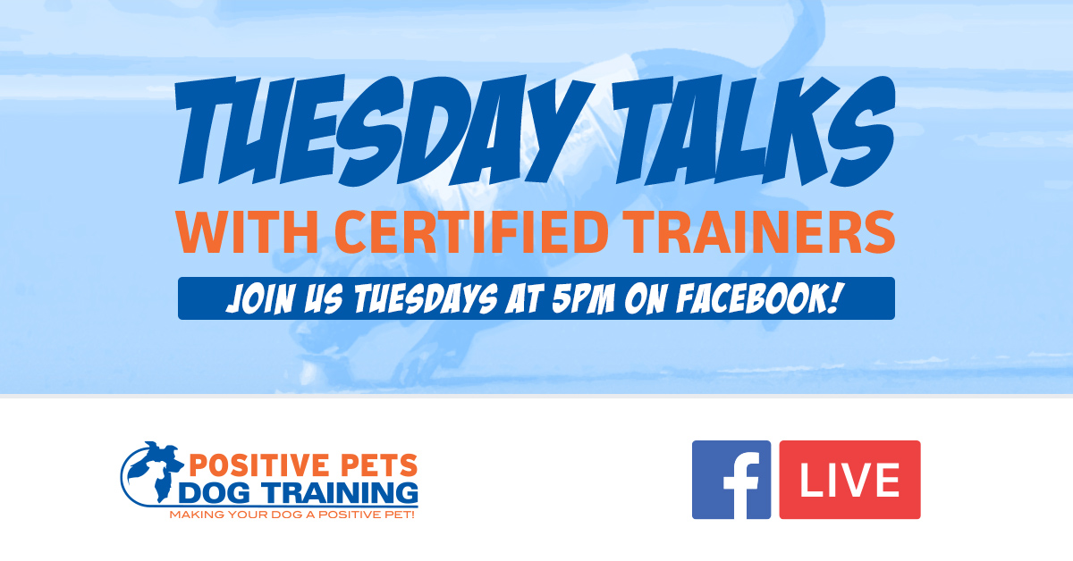 Tuesday Talks with Certified Trainers on Facebook Live